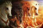 um breve comentario sobre apocalipse